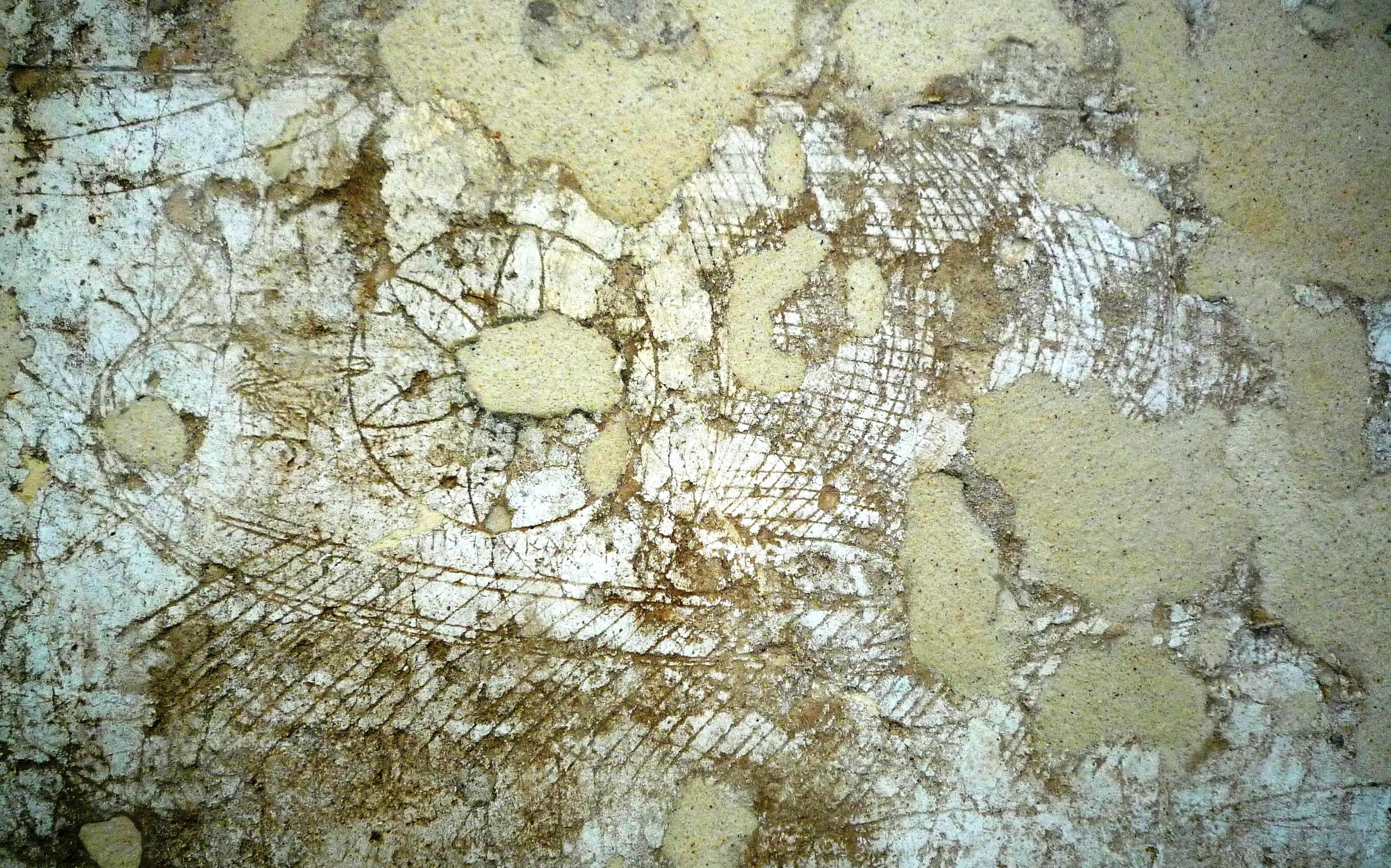 http://www.ancientportsantiques.com/wp-content/uploads/2011/07/Delos-Graffito50oars.jpg
